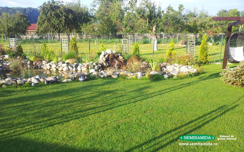 Proiectare si amenajare spatii verzi